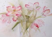 Tulpen - Sabine Koloska